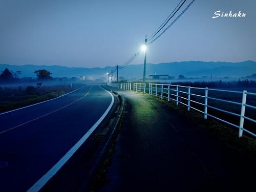 EM593629_Sinhaku.jpg
